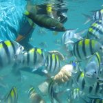 Gili Nanggu Day Tour